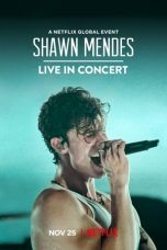 Shawn Mendes: Live in Concert 2020 Subtitle Indonesia