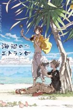 The Stranger by the Beach 2020 Subtitle Indonesia