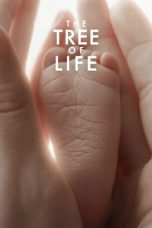 The Tree of Life 2011 Subtitle Indonesia